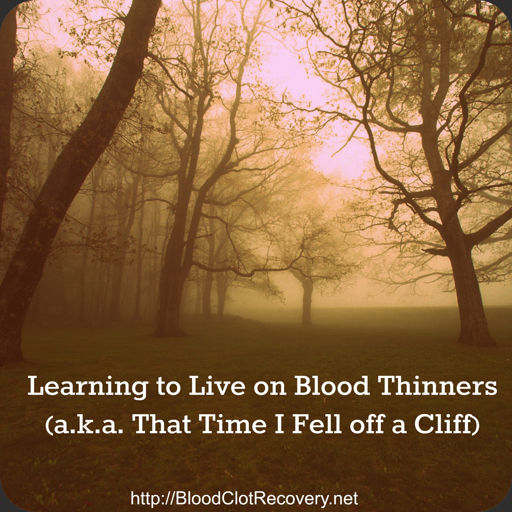 Learning to Live on Blood Thinners (a k a  That Time I Fell